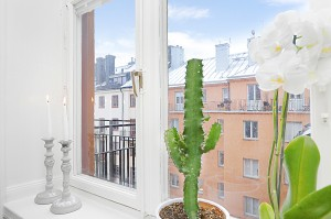 05 - Vackert fönster